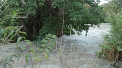Awash River - stock footage