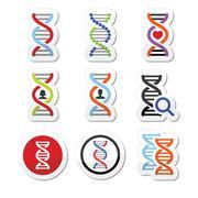 DNA, genetics vector icons set - stock illustration