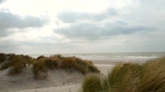 Sandy beach and dunes Stock Footage