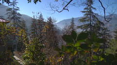 Mountains and trees in Himachal Pradesh, India. Stock Footage