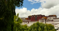 Stock Video Footage of 4k Potala with willow in Lhasa,Tibet.