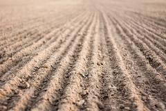 Furrows In Agricultural Field After Plowing It Stock Photos