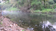 Winter season at forest and stream or canal of Suan Phueng Stock Footage