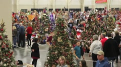 Christmas tree browsing from above pan Stock Footage