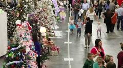 Christmas tree browsing time lapse Stock Footage