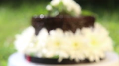 Chocolate cake decorated on stand Stock Footage