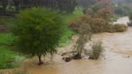 Stock Video Footage of Rain Flood River