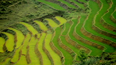 Zoom Out - Scenic Rice Farm Terraces - Northern Mountains of Sapa Vietnam Stock Footage