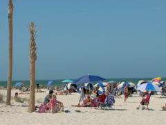 Stock Video Footage of Swimmers and surfers on Clearwater beach