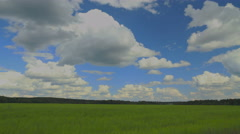 Summer field timelapse 4K Stock Footage