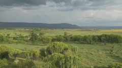 AERIAL: Lush landscape in Africa - stock footage