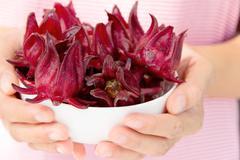 fresh roselle flower - stock photo