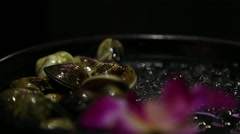 Asian BBQ Grilling Fresh clams on a gas grill in one restaurant chinese-Dan Stock Footage