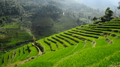 Time Lapse of Scenic Rice Terraces in the Northern Mountains of Sapa Vietnam Stock Footage