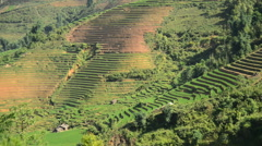 Time Lapse Pan - Rice Terraces in Green Valley Mountains of Sapa Vietnam Stock Footage
