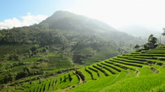 Zoom Out of Scenic Rice Terraces in the Northern Mountains of Sapa Vietnam Stock Footage