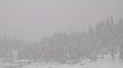 Heavy snowfall in the background of trees horizontal panning Stock Footage