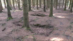 Easy Co. foxhole (Band of Brothers) near Foy in Belgium. Stock Footage