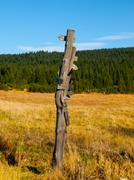 Wooden signpost Stock Photos