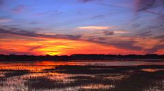 Sunset Timelapse over swamp wetlands Stock Footage