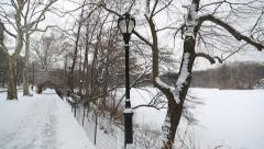 Snow in Central Park Stock Footage