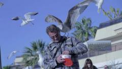 Man feeding the birds - AUDIO Stock Footage