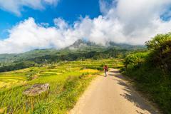 stunning rice paddies exploration - stock photo