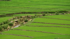 Zoom Out of Scenic Rice Terraces - Northern Mountains Sapa Vietnam Stock Footage