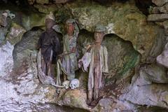 traditional burial site in tana toraja - stock photo