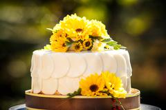 white creamy delicious cake - stock photo