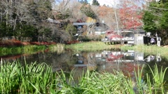 Autumn color of pond, Karuizawa, Nagano, Japan Stock Footage