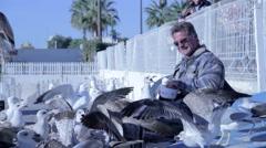 A man is feeding the birds - AUDIO Stock Footage