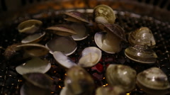 Asian BBQ Grilling opening clams on a gas grill in one restaurant chinese-Dan Stock Footage