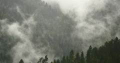 4k timelapse mountain mist rising in the morning,fog trees,Bomi County,tibet. Stock Footage