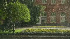 Rain on the street in the summer Stock Footage