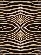 Kaleidoscope zebra skin pattern Stock Illustration