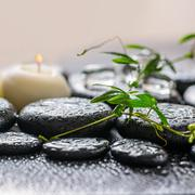 beautiful spa concept of green twig passionflower with tendril, ice and candl - stock photo