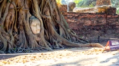 Buddha Head Overgrown By Tree, ayutthaya Thailand Stock Footage