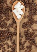 wooden spoon with  lump sugar - stock photo