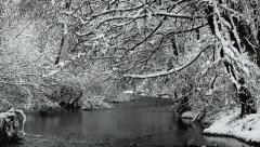 Snow falls from tree in river Stock Footage
