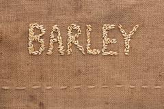barley word written on sackcloth - stock photo