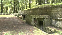 Colonel Driant's command post, Bois des Caures, near Verdun, Meuse, France. Stock Footage