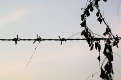 silhouette of barb wire at a post - stock photo