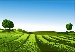 Rural landscape - stock illustration