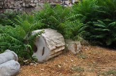 overgrown ruins - stock photo