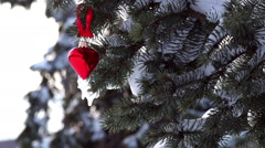 Spruce Branch with Snow and Heart Stock Footage