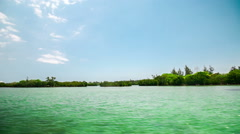Mangroves mauritius ile aux cerfs Stock Footage