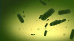 Bacterias and germs Stock Footage