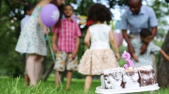 Birthday cake with a candle on the grass, in background family - stock footage