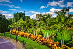 Trees and plants along a path at the public garden in boston, massachusetts. Stock Photos